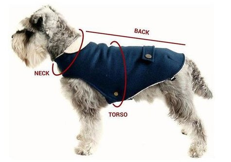 dog coat measurement guide 475