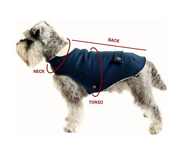 dog coat measurement guide 750