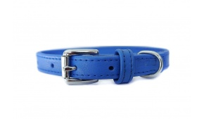 blue-small-leather-dog-collar