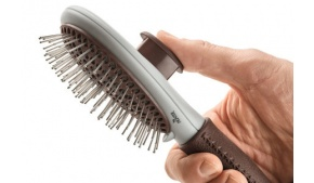 buy-dog-brushes-and-combs