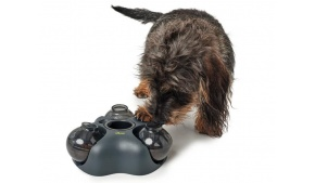 kern-interactive-dog-toy-lifestyle