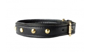 top-grain-leather-dog-collar-studs