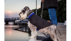 wool-blue-grey-dog-jumper-lifestyle