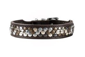 buy-leather-dog-collars-nz