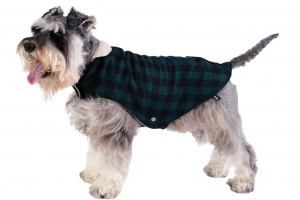 calgary-wool-dog-coat-lifestyle2