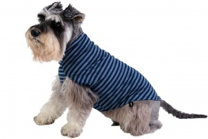 dog-jumper-merino-blue-stripe-lifestyle2