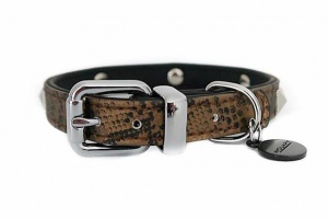 python-bronze-dog-collar-enl