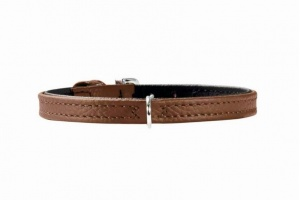tiny-brown-dog-collar-back