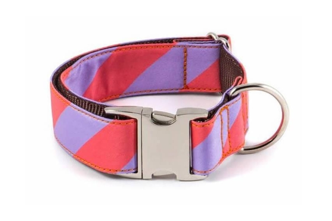 sagaro-fabric-dog-collar-brott